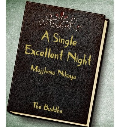 Leather book Cover with A Single Excellent Night as title